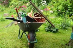 Jardinagem no Lago Sul DF